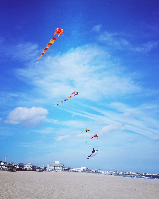 Kites at Hampton